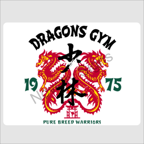 Dragons Gym1